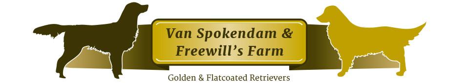 Van Spokendam & Freewill's Farm – Golden & Flatcoated retrievers